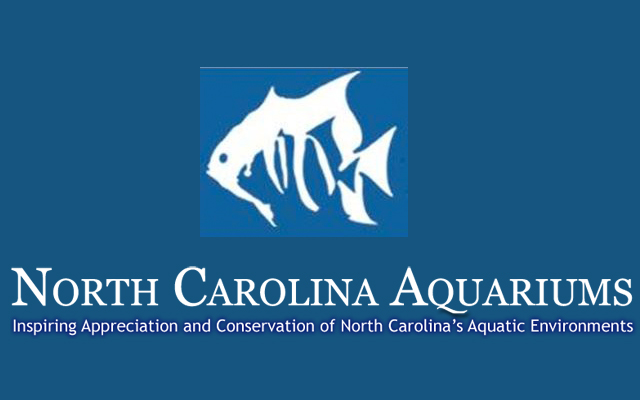 Lights Out At Nc Aquarium On Roanoke Island Outer Banks Events Calendar