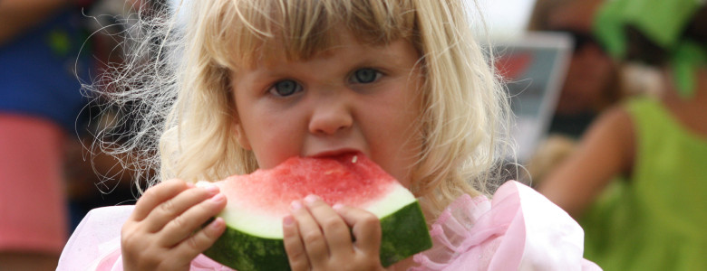 watermelon4-780x300