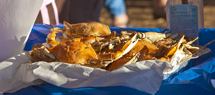 Outer Banks Events - Seafood Festival