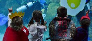 Outer Banks events - Halloween - aquarium