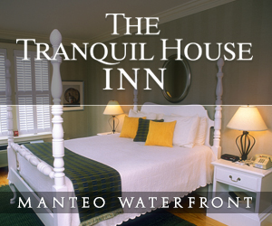 Tranquil House Inn 300×250