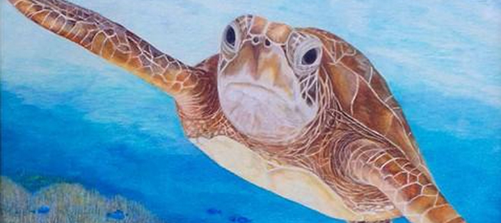 Outer Banks events - Seaside Art Gallery - Animals in Art Show - Coastal Humane Society