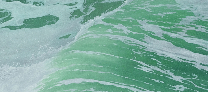 Outer Banks art gallery exhibits - DCAC - Taylor Willimas